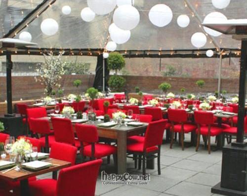18 arhans vegetarian comfort food vegetarian restaurant for Food bar otarian