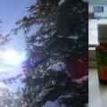 vitamin D issues