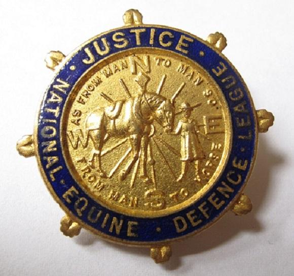 Horse-Equine-Badge