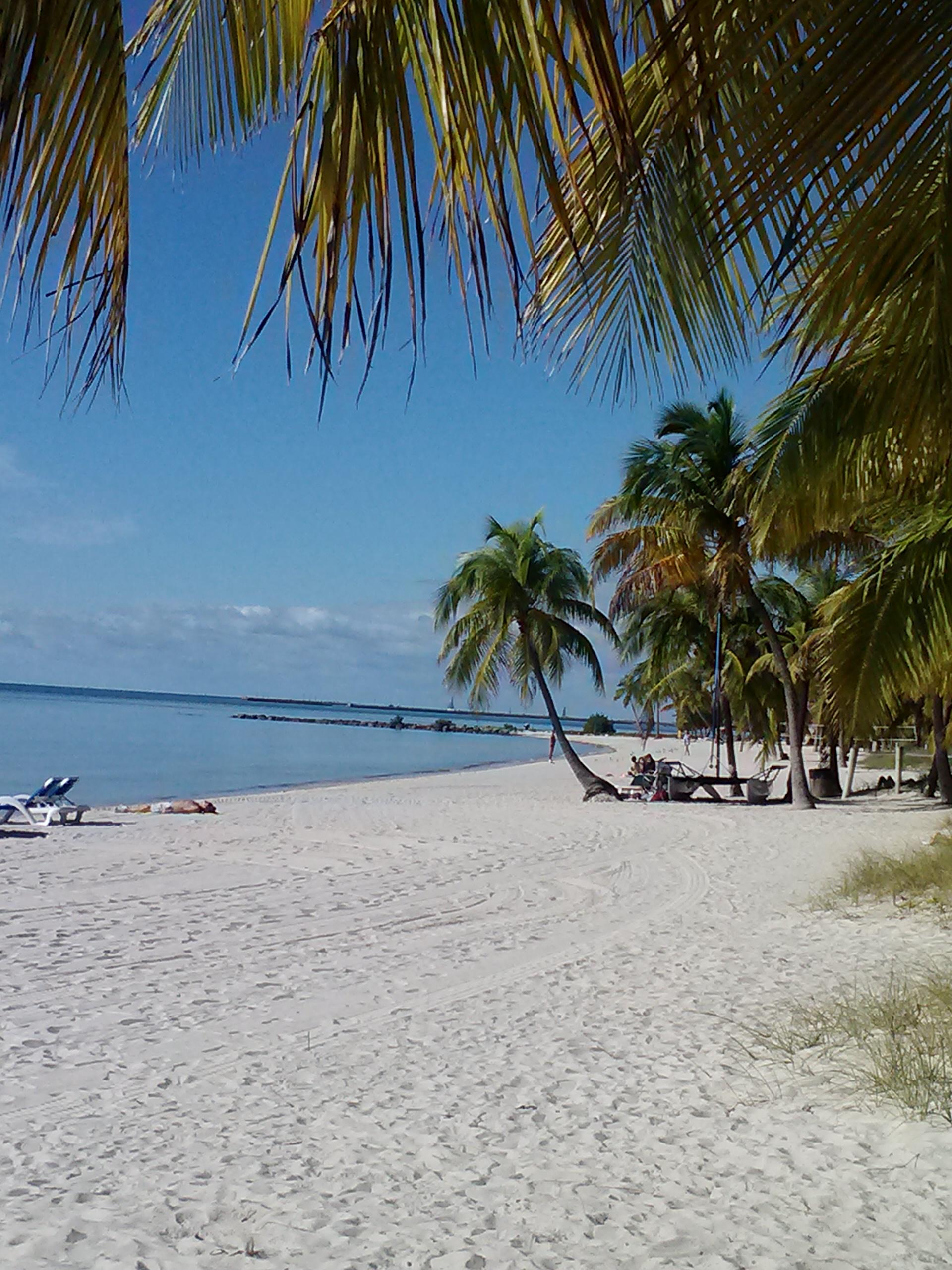 Vegan Restaurants In Key West Happycow