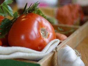 vegan tomato garlic soup