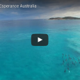 It doesn't get much better than this video of a large dolphin pod surfing the waves at West Beach in Esperance, Western Australia! We were awestruck by this beautiful example […]
