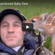Get the tissues ready! This kindhearted man took in an injured fawn that was abandoned by its family, and nursed it back to health!