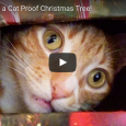 This is a hilariously genius alternative to the traditional tree, when you need something that's purrfect for cats!