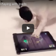 Here's a cute compilation of animals absolutely dominating iPad games. The DJ one is so cool!