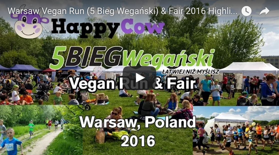 Warsaw Vegan Run And Fair 2016 Highlight Footage