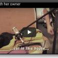 Have you ever seen a cat backup singer? Luna the kitty nails it in this acoustic number. Check out this adorableness: