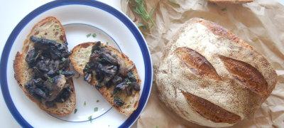 Creamed Tarragon Mushroom on Toast